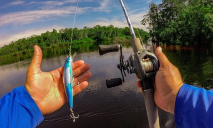 Lawson Lindsey – Huge Amazon Jungle Fish Destroys This Bait!