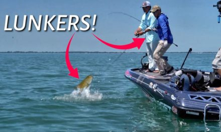 Scott Martin Pro Tips – Lunkers on LUNKERS – A Day You Dream About!