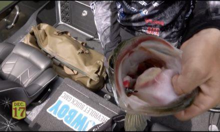 Bassmaster – Stetson Blaylock's Big Bed Fish at Lake Hartwell