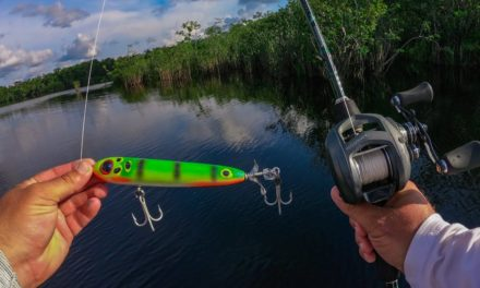 Lawson Lindsey – THROWING CRAZY GIANT TOPWATERS FOR HUGE FISH IN THE AMAZON