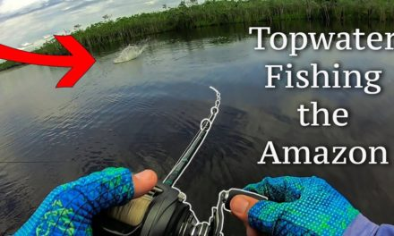 Lawson Lindsey – The Biggest One They've Ever Seen + Topwater Fishing In the Amazon