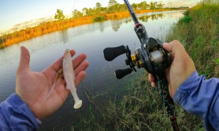 Lawson Lindsey – The Fishing In Florida You May Have Never Heard of