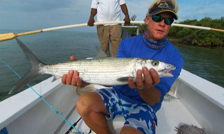 Bimini Bonefish Fishing the Flats in the Bahamas