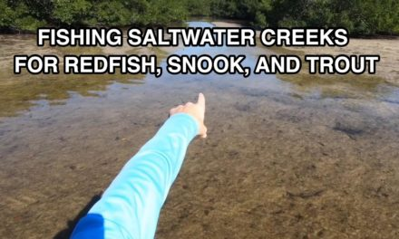 Salt Strong | – How To Fish Saltwater Creeks In The Winter (Even When Everything Goes Wrong)