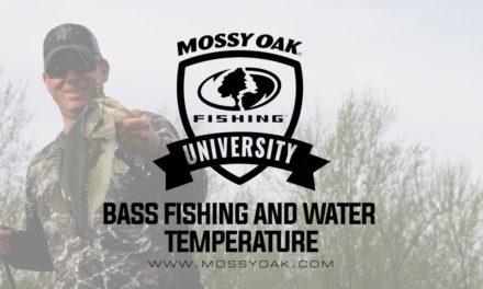 Largemouth Bass Fishing and Water Temperature • KVD Fishing Tips