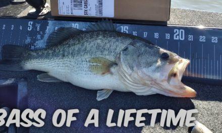 CA DELTA BASS FISHING.(Bass Of A Lifetime)