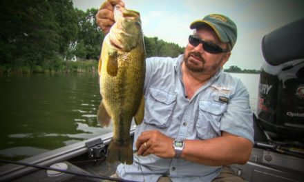 Finding Bass and Walleye