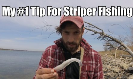 """My Best Advice For Fishing Soft Baits or Bucktails – Striped Bass Tips – """"CADENCE"""""""