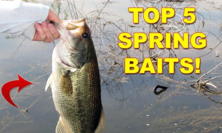5 Best Lures For Spring Bass Fishing | Bass Fishing