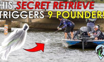 BPT Lake Fork Winning Pattern | Baits and Area Ott DeFoe Won Major League Fishing on Lake Athens
