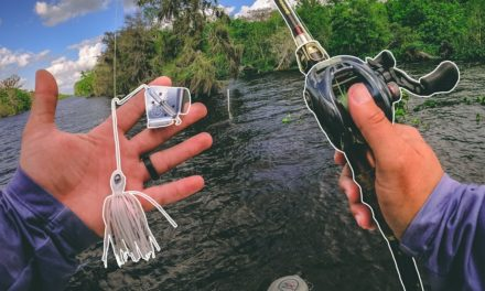Lawson Lindsey – Crushing Fish on Topwater While Searching for a GIANT FISH