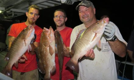 Salt Strong | – Top 3 Mangrove Snapper Mistakes (Are You Making These)?