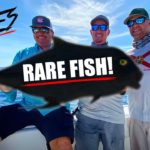 Scott Martin – WE FINALLY CAUGHT ONE! – 250 MILES in Search of This RARE Fish!