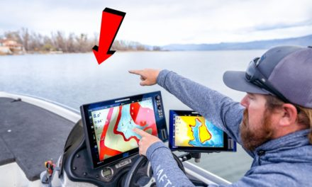 Where Do Bass Go In Spring? (And How To Catch Them)