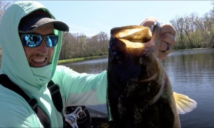 Bassmaster – 2020 Bassmaster Elite at St. Johns River (TV)
