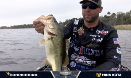 Bassmaster – LIVE from the Lake with Bassmaster Elite Series pro Lee Livesay
