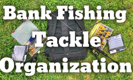 FlukeMaster – Bank Fishing Tackle Organization