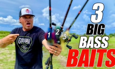 Scott Martin Pro Tips – 3 Lures That Catch BIG Fish EVERYWHERE
