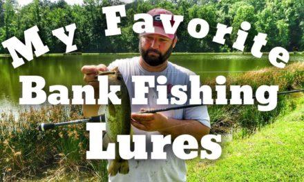 FlukeMaster – Favorite Bank Fishing Lures – Bass Fishing