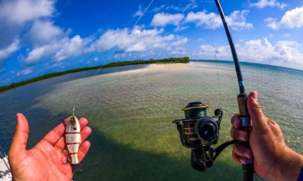 Lawson Lindsey – Fishing Huge Saltwater Barrier Islands with Swimbaits