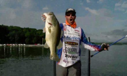 Wheeler's Chickamauga 10-Pounder