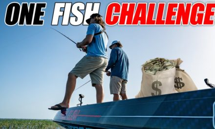 Scott Martin Pro Tips – Taking the ONE Fish Challenge for $$$