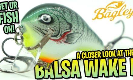 Closer Look at the Bagley Balsa Wake 1 – Shallow Water Crank Bait