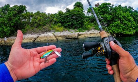 Lawson Lindsey – Fishing Deep Inshore to Find Fish on a Brutally Hot Day