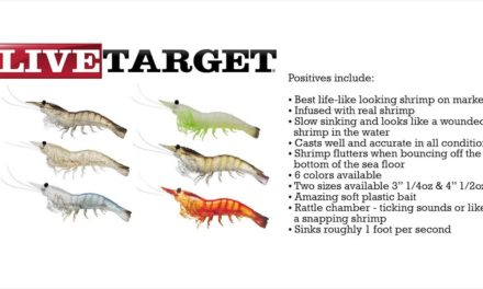 "Fishing Florida Radio's review of Live Target Lures 4"" Shrimp a division of Koppers Tackle"
