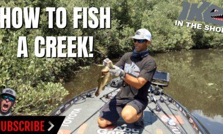 Mike Iaconelli Secret Tips & Tactics – How to Fish a Creek!