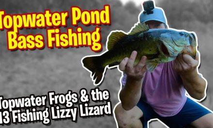 Topwater Bass Pond Fishing – Topwater Frogs & 13 Fishing Lizzy Lizard