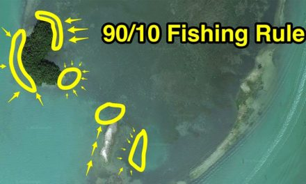 Salt Strong | – 90/10 Fishing Rule: How To Find 90% Of All Feeding Fish (In Just 10% Of The Ocean)