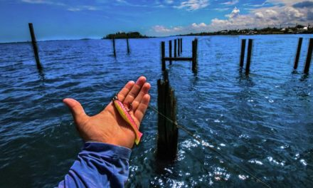 Lawson Lindsey – Fishing Abandoned Saltwater Docks Inshore