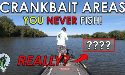 Fishing Against a Pro On His Home Lake | Jonny Vs. Randy Fish Off
