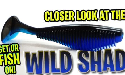 Is the NEW V&M Wild Shad the BEST Bass Fishing Soft Plastic Swimbait?