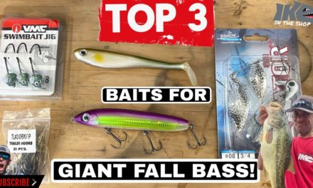 Mike Iaconelli Secret Tips & Tactics – Top 3 Baits for Giant Fall Bass!