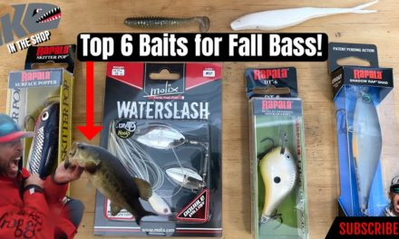 Mike Iaconelli Secret Tips & Tactics – Top 6 Baits for Fall Bass!