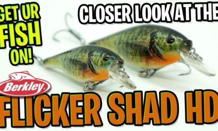 Berkley Flicker Shad – NEW Shallow Water Bass Fishing Crankbait Lure