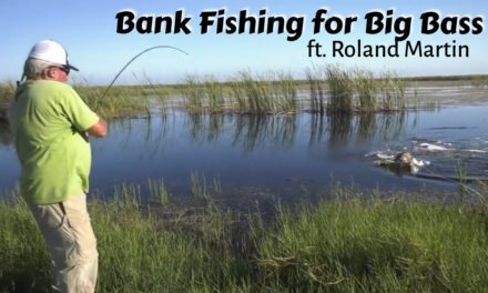 Scott Martin Pro Tips – How to Catch Bigger Fish when Bank Fishing – Roland Martin