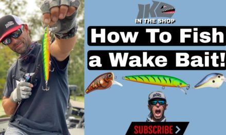 Mike Iaconelli Secret Tips & Tactics – How to Fish a Wake Bait!