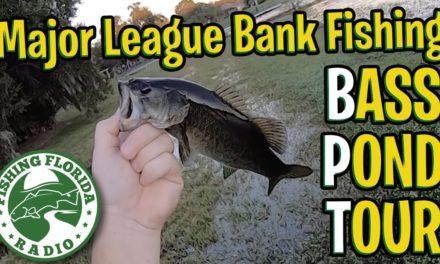 Major League Bank FIshing Bass Pond Tour – Fishing Florida Radio – Central Florida TINY BASS