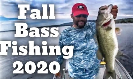 FlukeMaster – Where the Bass Go During the Fall – Bass Fishing