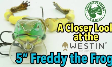 A Closer Look at the NEW 5inch Westin Freddy the Frog – 2019 iCast New Product