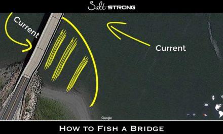 Salt Strong | – Bridge Fishing: Best Baits, Spots & More