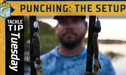 Bassmaster – Looking for a big bite in the fall? Try punching grass