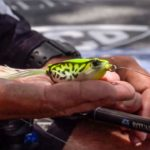 Tackle Warehouse Double Down | Jared Lintner's Go-To Baits