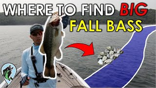 Why You Struggle to Catch Big Bass in the Fall