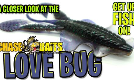 Closer Look at the Chasebaits Love Bug – Bass Fishing Creature Bait