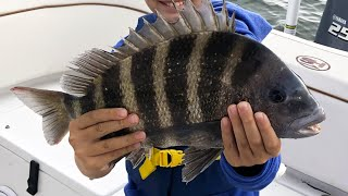 Salt Strong | – CHUMMING For Sheepshead (Quick & Easy Way To Catch Dozens Of Them)