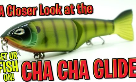Closer Look at the Tunderhawk Lures Cha Cha Glide Bass Fishing Bait